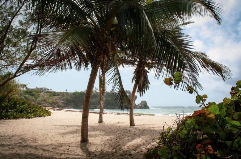Barbados-02